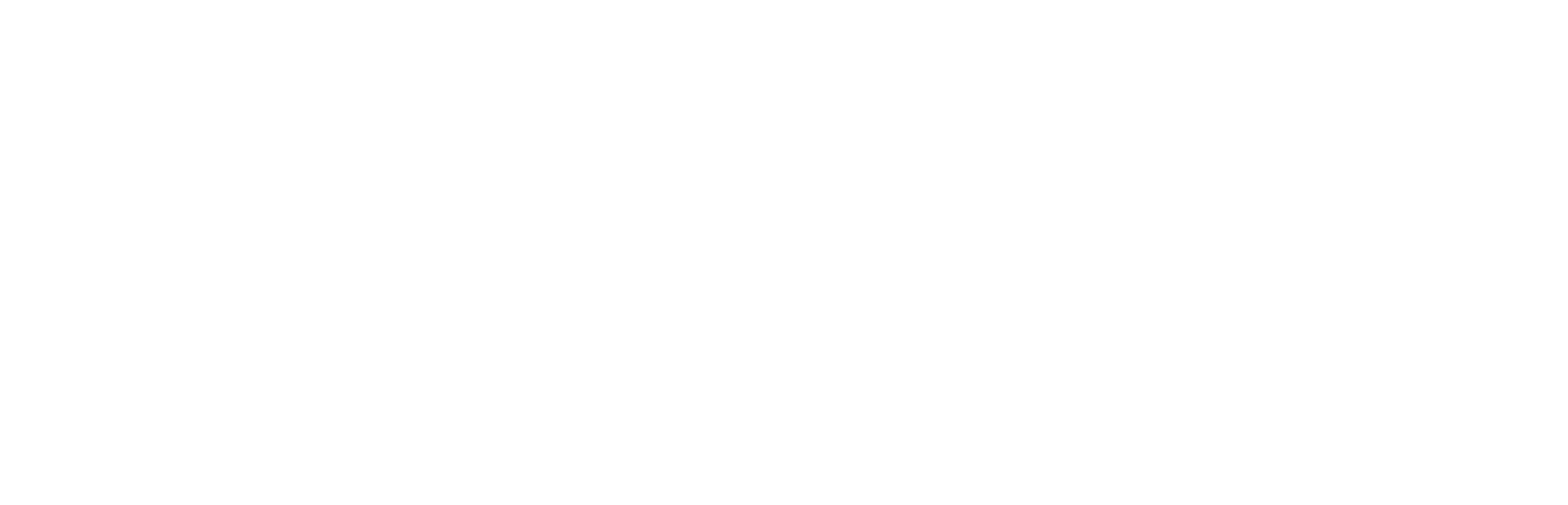 Icon Sports Consulting
